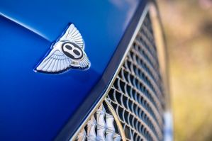 New Continental GT - 16